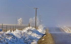 Картинка иней, дорога, пейзаж, туман, утро