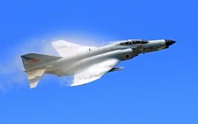 Обои истребитель, многоцелевой, Phantom II, F-4E
