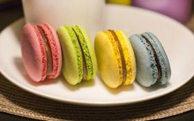 Картинка синий, желтый, зеленый, розовый, еда, сладости, разноцветные