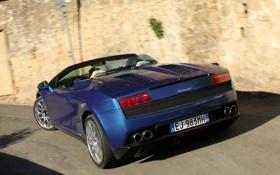Обои синий, Lamborghini, суперкар, Gallardo, Spyder, задок, ламборгини