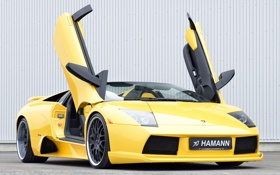 Обои авто, Roadster, Lamborghini, двери, суперкар, Hamann, Murcielago