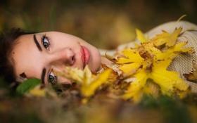 Картинка осень, листья, девушка, Joan Le Jan, The eyes Of Love
