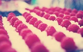 Картинка макро, малина, фон, обои, еда, ягода, ряд