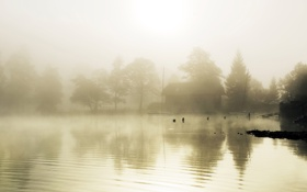 Обои туман, озеро, дом, гладь, лестница, строение
