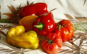 Обои пища, лето, желтые, еда, красные, овощи, помидоры