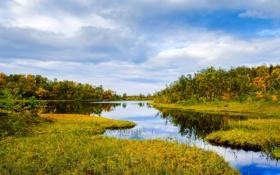 Обои небо, трава, вода, облака, деревья, отражение, Норвегия
