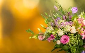 Картинка фон, розы, букет, бутоны, хризантемы, эустома