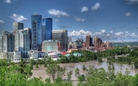 Обои деревья, здания, Канада, панорама, Canada, Калгари, Calgary