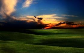 Обои трава, небо, фото, пейзажи, поле, красота