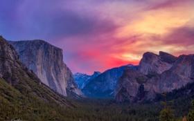 Картинка лес, горы, скалы, рассвет, долина, сша, Национальный парк Йосемити