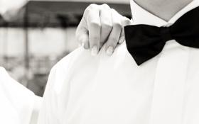 Обои бабочка, рука, рубашка, чёрно-белый, жених, маникюр