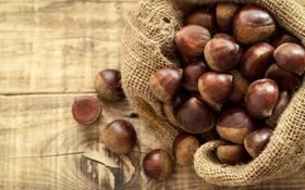 Обои дерево, орехи, мешок, лесной орех, фундук