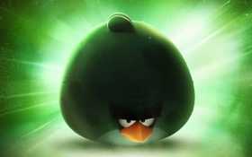 Картинка космос, angry birds space, ROVIO, Злые птицы