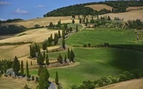 Картинка дорога, небо, трава, облака, деревья, дом, холмы