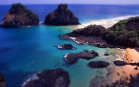 Картинка пляж, вода, океан, скалы, tilt shift