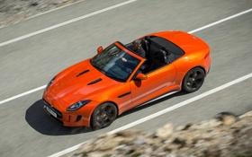 Картинка дорога, машина, оранжевый, Jaguar, ягуар, F-Type, V8 S