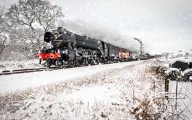 Обои зима, дорога, снег, поезд