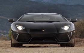 Картинка мечта, фон, фары, Lamborghini, спорткар, красотка, гравий