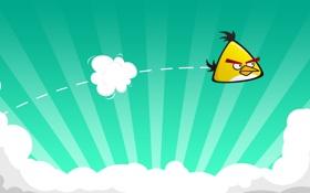 Обои полёт, Angry Birds, игра, game