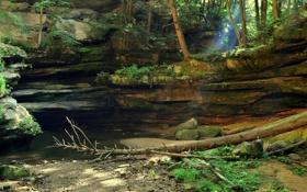 Обои лес, вода, лучи, деревья, скала, ручей, камни