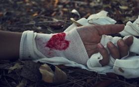 Обои листья, кровь, сердце, рука, бинт