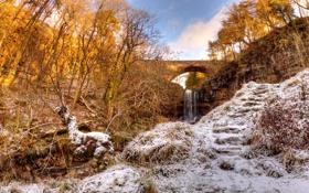Обои зима, деревья, мост, река, ручей, водопад, овраг