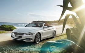 Картинка бмв, BMW, кабриолет, Cabrio, 4 series, 2015