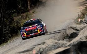 Обои Авто, Синий, Скорость, Citroen, Red Bull, DS3, WRC