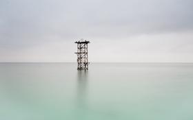 Обои море, башня, птицы, минимализм