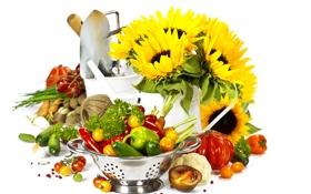 Обои зелень, подсолнухи, ведро, перец, миска, овощи, лопата