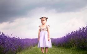 Обои платье, девочка, лаванда