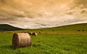 Картинка поле, небо, трава, тучи, природа, стог, сено