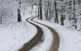 Обои зима, лес, снег, дорога