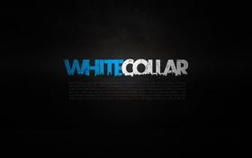 Картинка обои, сериал, wallpapers, белый воротничок, white collar