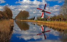 Обои деревья, дома, канал, Бельгия, Фландрия, ветряная мельница