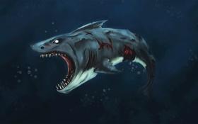 Обои океан, акула, zombie, shark
