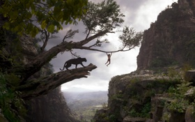 Картинка мальчик, The Jungle Book, Маугли, Книга джунглей, пантера, Багира