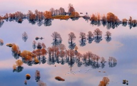 Обои вода, деревья, люди, лодка, наводнение, доска, Словения