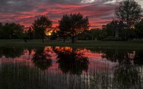 Картинка рассвет, Деревья, отражение озеро