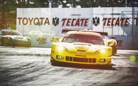 Обои желтый, Corvette, Chevrolet, шевроле, Racing, корвет, солнечный свет