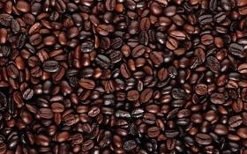 Обои фон, кофе, зерна