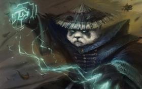 Обои шторм, панда, dota, дота, defense of the ancients, Fury on