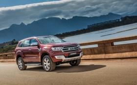 Обои Ford, форд, эверест, Everest, 2015