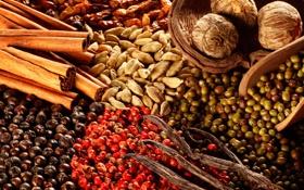 Картинка специи, приправы, ассорти, spices, seasonings, assorted