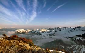 Картинка небо, солнце, облака, свет, снег, деревья, горы
