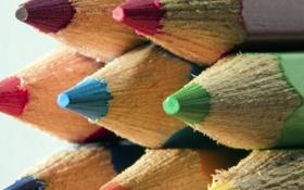 Картинка макро, карандаши, разноцветные