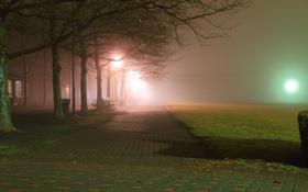Картинка ночь, город, парк