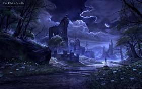 Обои ночь, река, ручей, человек, башня, руины, The Elder Scrolls Online