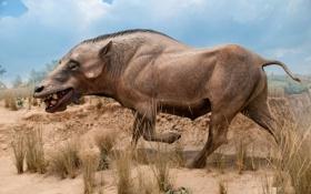 Картинка Animal, Paleo History, Denver Museum