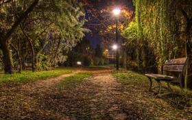 Картинка город, парк, скамья